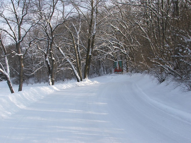 Winter-Activities-03.jpg