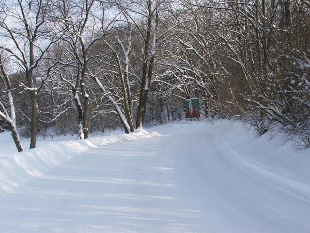 Winter-Activities-03.jpg